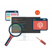 Magento Dedicated Developer